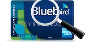 BluebirdCard